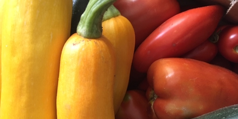 Gemüse Zucchini und Tomaten
